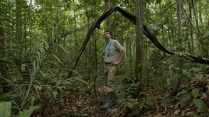 Photo by the Amazon rainforest 2008